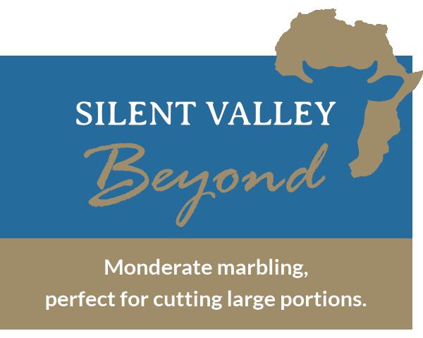 Silent Valley Beyond